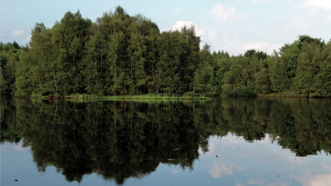 Berumerfehner Moor