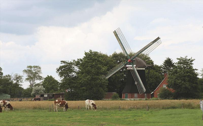 Tjadensche Mühle